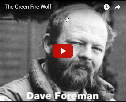 dave foreman green fire wolf