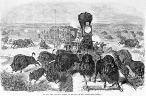 hunters-shooting-at-a-herd-of-bison-everett