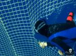 A diver cuts one of the tuna nets Photo: Sea Shepherd / Simon Ager