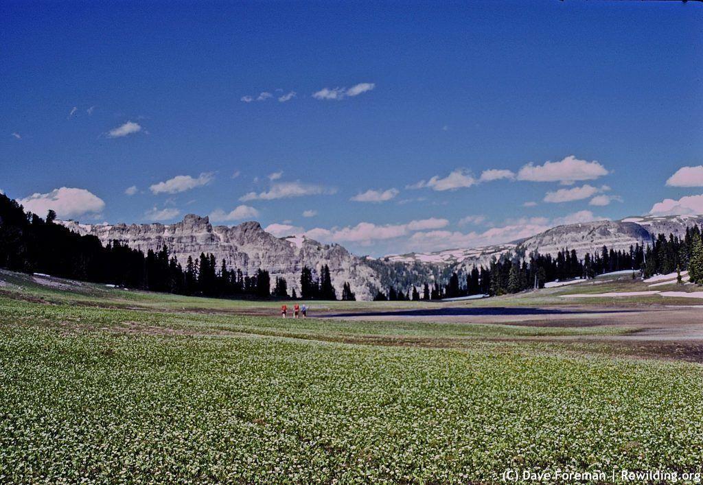 Bonneville Pass, DuNoir, WY