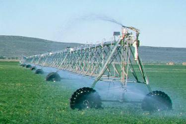 Irrigated hay production Idaho c/o George Wuerthner
