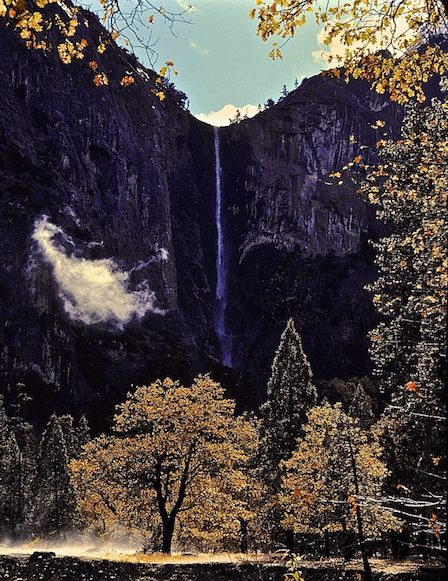 Yosemite National Park in the fall, c/o Dave Foreman