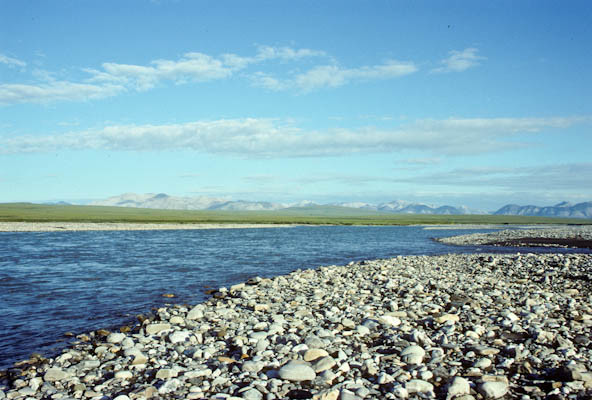 Canning River, Arctic Wildlife Refuge, Brooks Range, Alaska (c) George Wuerthner