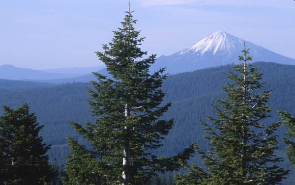 Mount McLoughlin from Soda Mountain, Cascade Siskiyou National Monument, Oregon (c) George Wuerthner