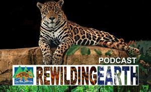 rewilding earth podcast