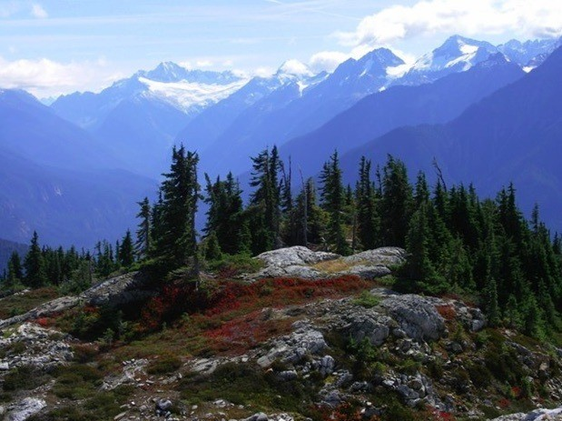 Autumn colors and glaciated mountain backdrops are some of the spectacular vistas from Sourdough Mountain Trail (c) R Seifried