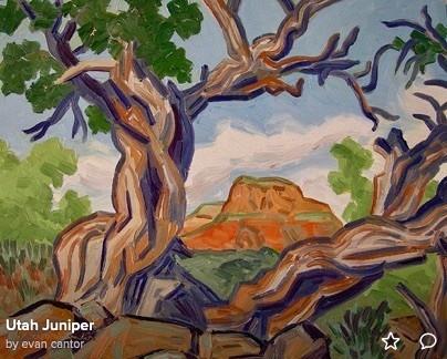 Utah Juniper near Sedona (c) Evan Cantor