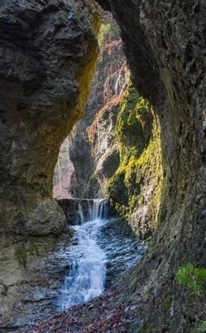 HI Nature Sanctuary (c) Tom Croce