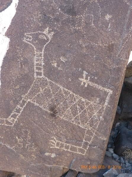 Three Rivers NM Petroglyph 2 (c) Kirk Robinson