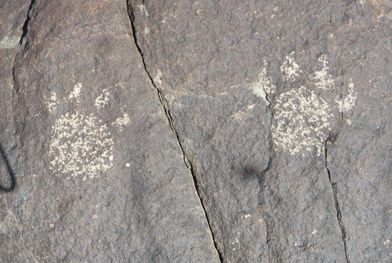 Three Rivers NM Petroglyph (c) Kirk Robinson