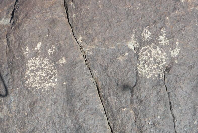 Three Rivers NM Petroglyph (c) Kirk Robinson