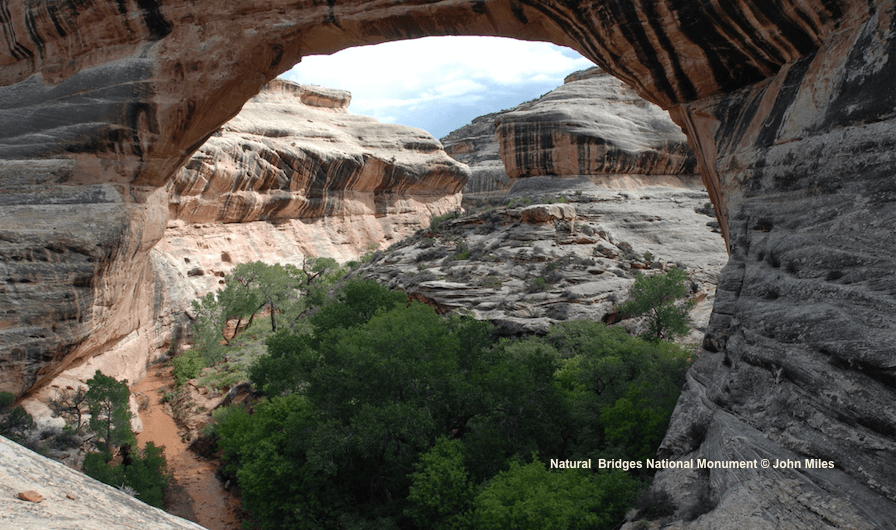 Natural Bridges National Monument © John Miles