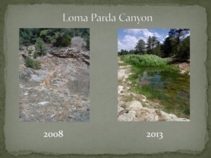Loma Panda Canyon (c) Brian Miller