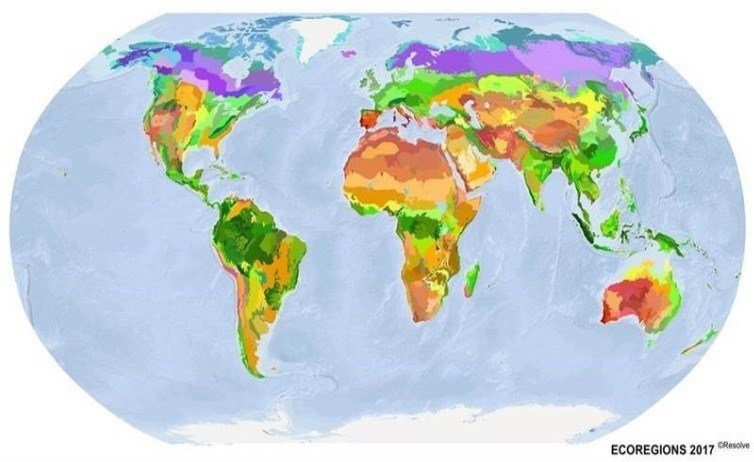 There are 846 ecozones on terrestrial earth. Bioregions are smaller areas inside them.