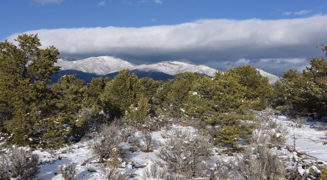 Columbine Hondo Wilderness NM © John Miles