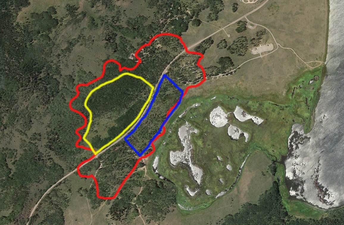 Figure 3. Red line: outline of the Pando Clone. Yellow and blue lines: fences to keep out mule deer and livestock for research purposes. Tan line through the middle of the Pando Clone: State Highway 25. Fish Lake, Utah, at lower right. Source: Western Watersheds Project.