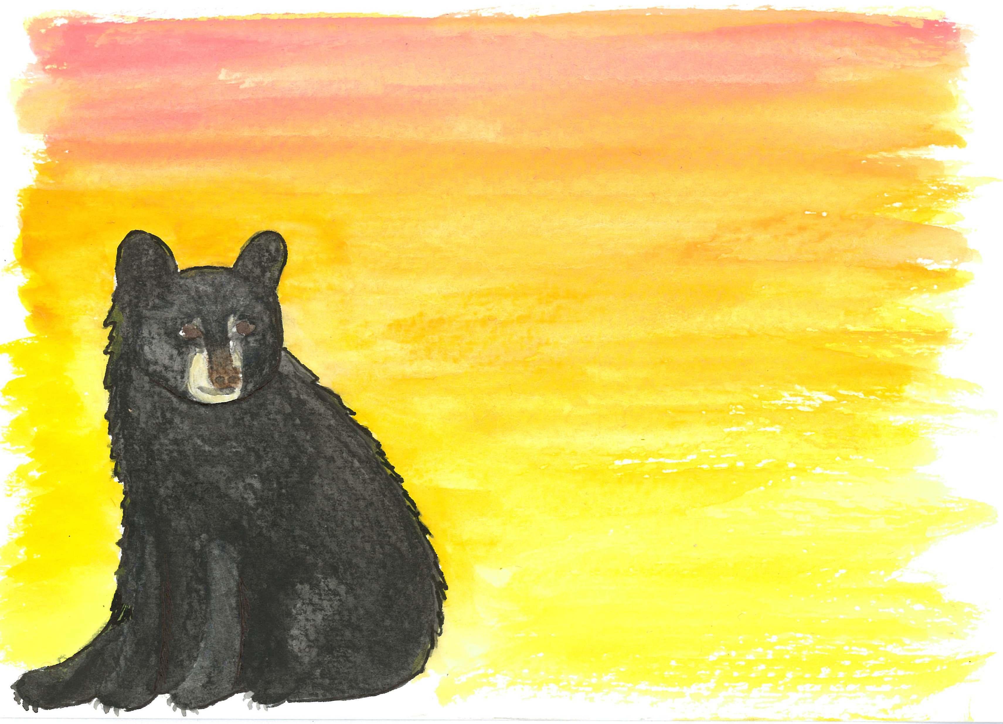 American Black Bear © KIT West Designs
