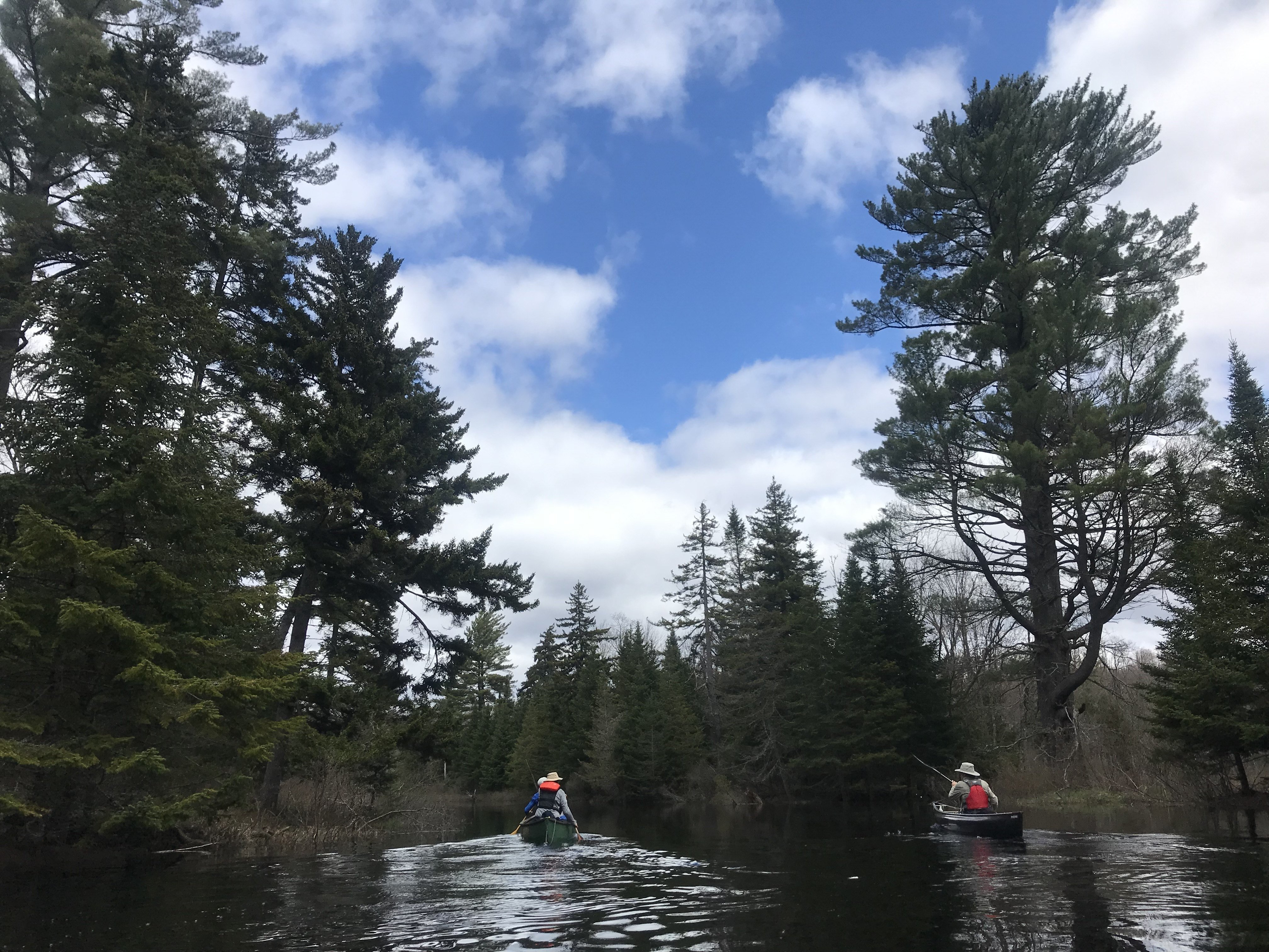 Five Ponds, Adirondack Park © Jon Leibowitz