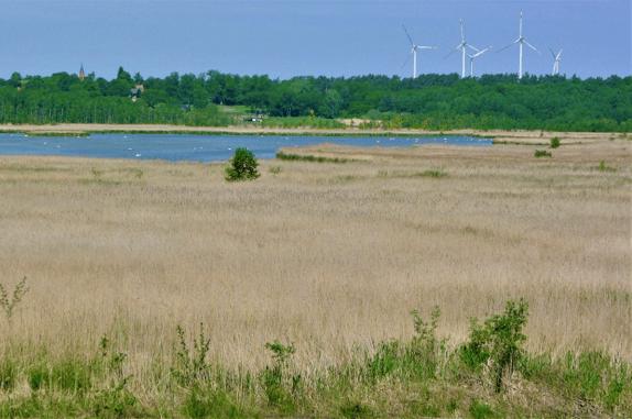 Elbe River Biosphere Reserve
