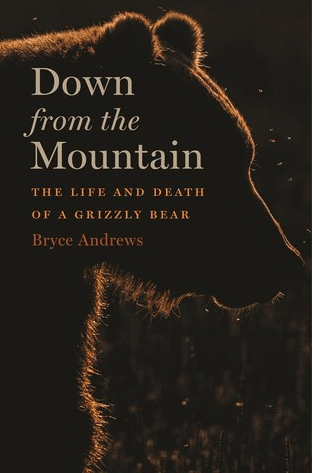 By Bryce Andrews, Down from the Mountain, The Life and Death of a Grizzly Bear, Boston: Houghton Mifflin Harcourt, 2019.