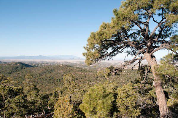 Southern end of Sangre de Cristo Range Santa Fe NF, NM © George Wuerthner