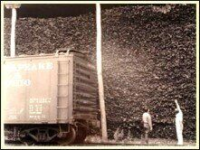 In 1939, 35,000 tons of bark on way to Lea & McVitty Tannery in VA. Courtesy of Bridgewater, VA office of U.S. Forest Service
