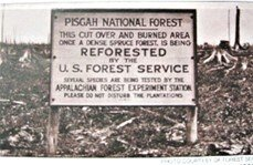 Sign at Pisgah National Forest, NC, ca 1920s, courtesy of U.S. Forest Service