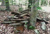 Remains of a rail fence in Hardy County, WV © Chris Bolgiano