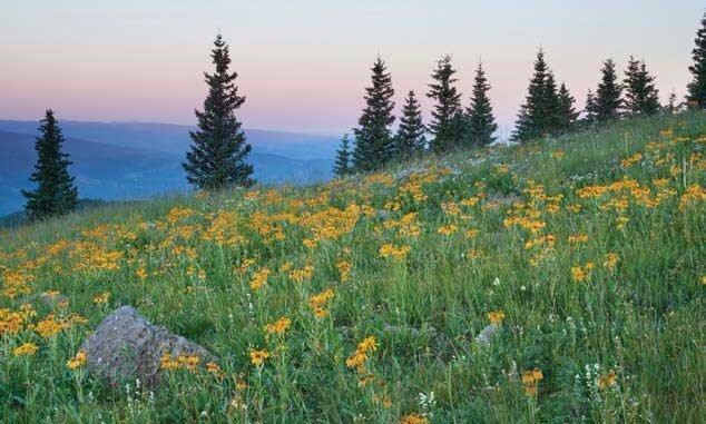 Thompson Divide Colorado near McClure Pass