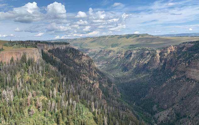 Deep Creek fed by snowmelt from Flat Tops Wilderness Colorado