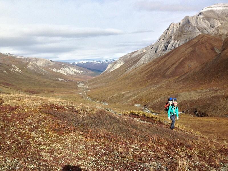 Arctic Coastal Plain in Arctic National Wildlife Refuge