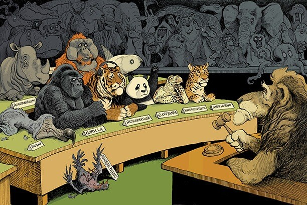 Biodiversity Illustration by David Parkins