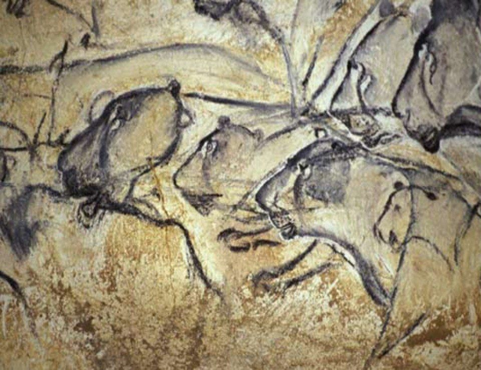 35,000-Year-Old Painting of Lions, Chauvet Cave, France