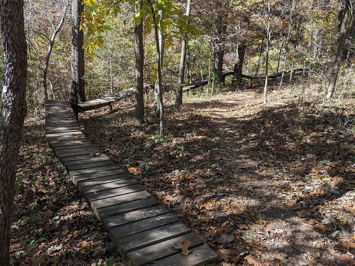 An xc trail in Bentonville, AR.