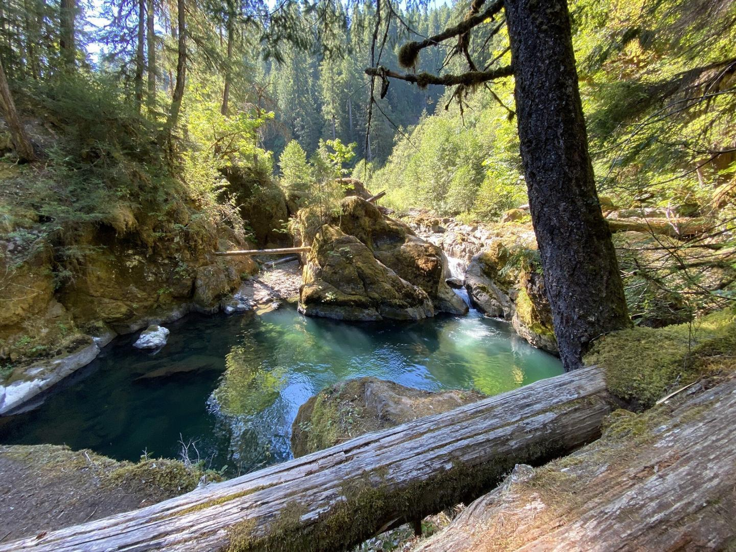 The proposed Middle Santiam Wild and Scenic River. Source: Chanda LeGue, Oregon Wild.