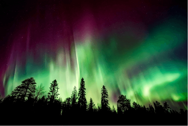 Northern lights by David Mark from Pixabay