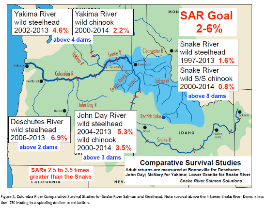 columbia river comparative survival studies for snake river salmon and steelhead