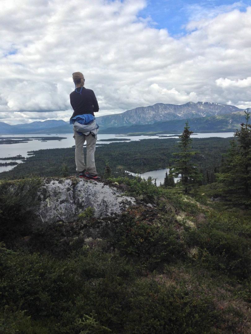 View of Lake Iliamna