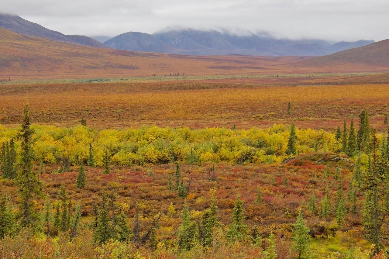 Arctic National Wildlife Refuge-near Colleen River