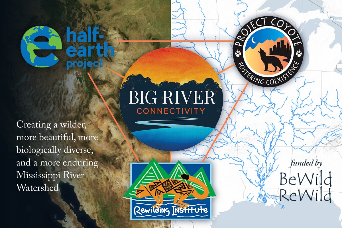 Big River Connectivity Partners Graphic