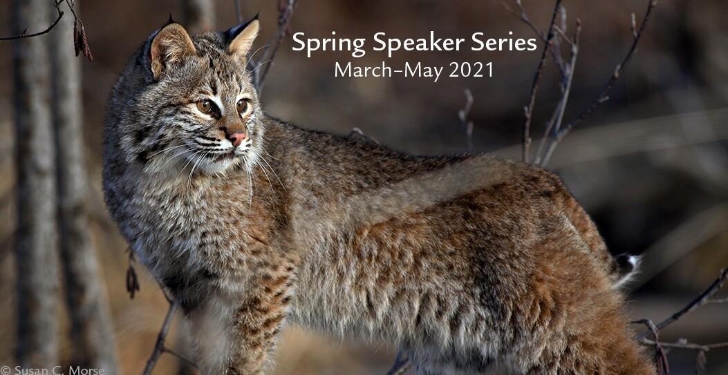 NEWT SpringSpeakerSeriesBanner