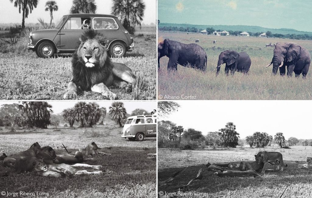 Tourism in Gorongosa before the Mozambican civil war