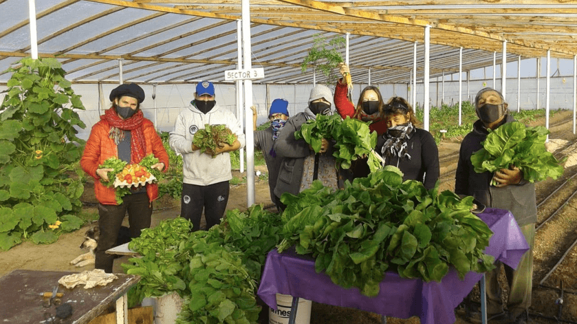 The proud team shows their fresh produce to the camera