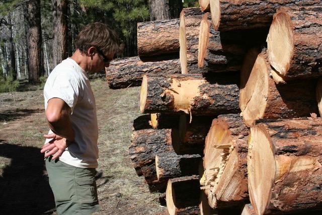 North Kaibab, TRI Executive Director John Davis with logs (c) Kim Crumbo