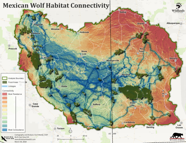 Mexican Wolf Habitat Connectivity Map