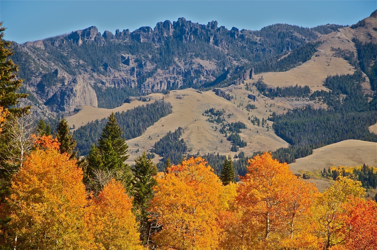 Gallatin Range Proposed Wilderness near author's home, Custer-Gallatin National Forest, MT